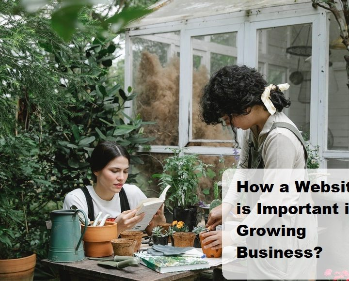 How a Website is Important in Growing Business?